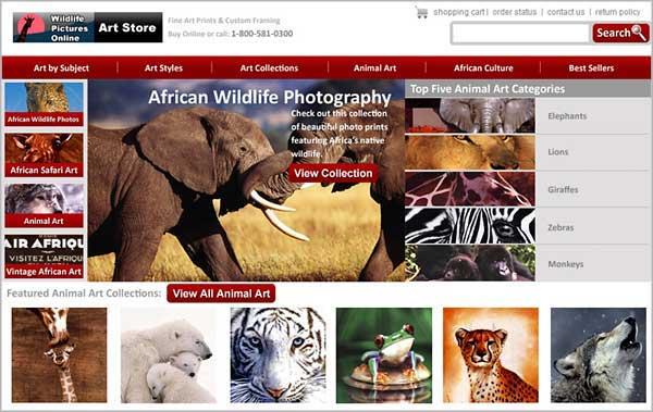 Wildlife pictures art gallery