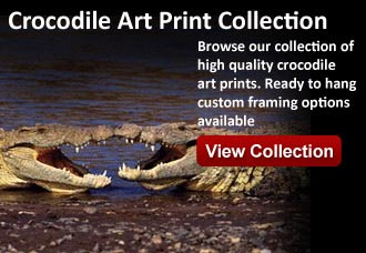 crocodile artwork at wildlife pictures art gallery
