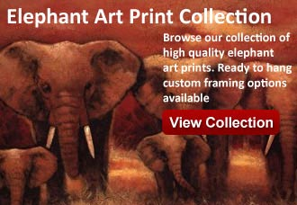 elephant art from wildlife pictures art gallery
