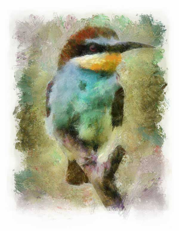 European bee-eater, impressionist style