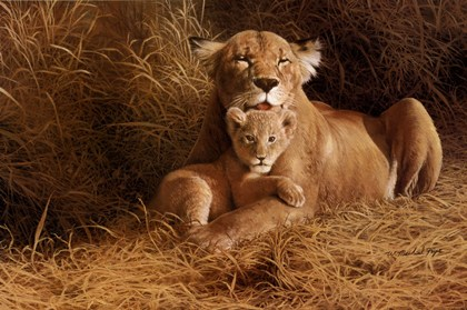 Lion print titled mothers pride