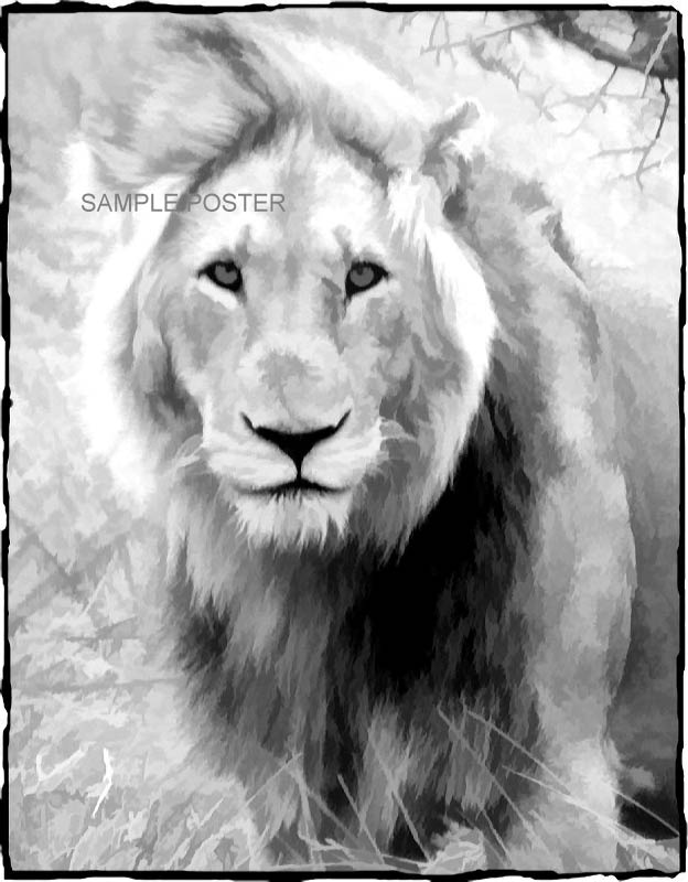 Lion poster in black and white