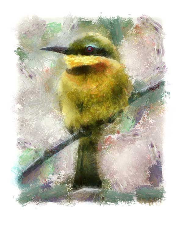 Little bee-eater digitally painted, impressionist style