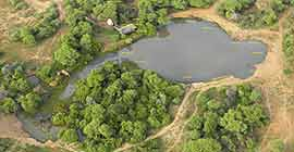 Petes Pond aerial view