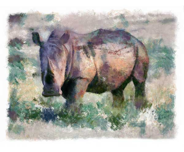 Rhino with mud-encrusted hide, digitally painted