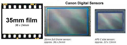 sensor and film size comparison for Canon 50D