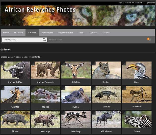 wildlife reference photos website