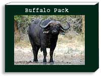 Buffalo photo pack