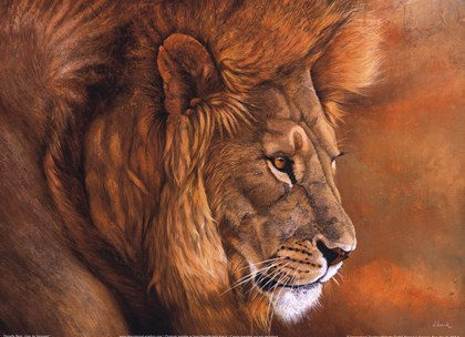 Lion du Serengeti art print